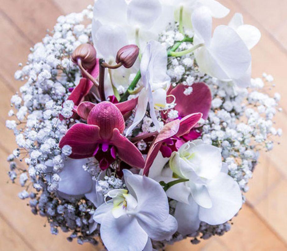 """""""Armonie di orchidee"""""""